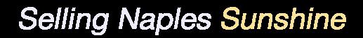 David Nourse - Downing Frye Realty Inc.